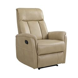 Dorel Living DA7767 Tallula Recliner