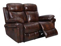 Oliver Pierce OP0035 Hudson Reclining Leather, Loveseat, Brown