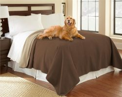 100% Waterproof Mambe Furniture Cover for Pets and People (Twin/Loveseat 70″x 90″, C ...