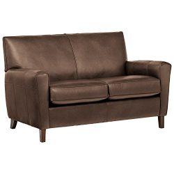 Rivet Lawson Modern Angled Leather Loveseat, 58″ W, Driftwood