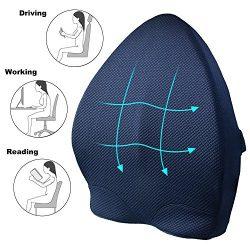 Memory Foam Lumbar Support Back Cushion,Ergonomic 3D Ventilative Mesh Lumbar Support Pillow,Orth ...