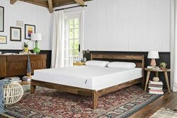 Tuft & Needle Queen Mattress, Bed in a Box, T&N Adaptive Foam, Sleeps Cooler with More P ...