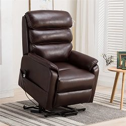 Irene House (Dual Motor)Electric Power Lift Recliner Chair For Elderly Comfortable (Breath Le ...