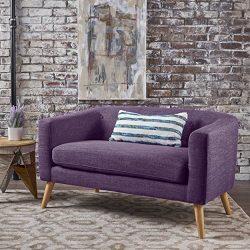 Christopher Knight Home 301295 Fabric Mid Century Modern Loveseat, Muted Purple