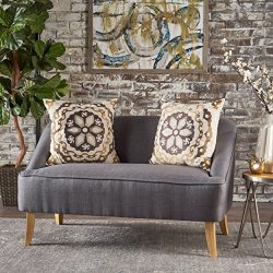 Jasper Mid Century Modern Fabric Loveseat (Dark Grey)