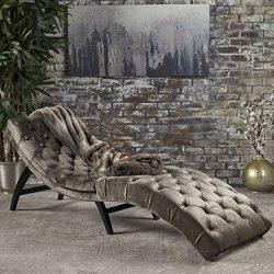 Christopher Knight Home 302203 Garret Velvet Chaise Lounge, Gray/Dark Brown