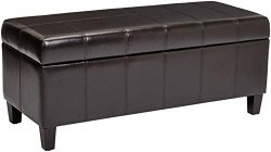 First Hill Damara Lift-Top Storage Ottoman Bench with Faux-Leather Upholstery, Mocha Brown