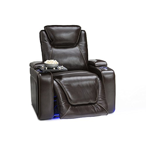 Seatcraft Equinox Leather Power Recliner with Power Lumbar Support, Adjustable Powered Headrests ...