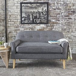 Christopher Knight Home 301300 Mariah Grey Mid Century Modern Loveseat