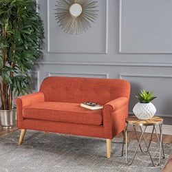 Christopher Knight Home 301299 Mariah Modern Loveseat, Muted Orange