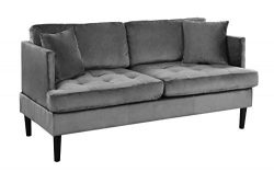 Mid Century Modern Velvet Loveseat Sofa with Tufted Seats (Grey)
