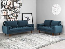 Container Furniture Direct S5456-2PC Mid Century Modern Velvet Upholstered Button Tufted Living  ...