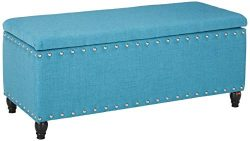 Christopher Knight Home 300316 Living Dynasty Fabric Storage Ottoman (Teal), 18.25″ D x 42 ...