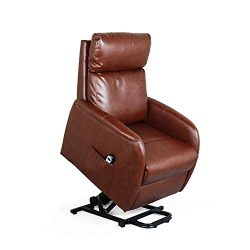 Recliner Chair Electric Lift Lounge with Remote Control Living Room Bedroom Office Reclining Sof ...