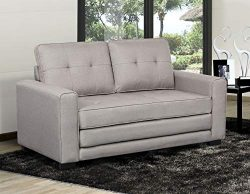 US Pride Furniture S5334 Daisy Modern Fabric Loveseat and Sofa Bed, Light Grey
