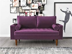 Container Furniture Direct S5458 Mid Century Modern Velvet Upholstered Tufted Living Room Lovese ...
