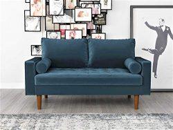 Container Furniture Direct S5456 Mid Century Modern Velvet Upholstered Tufted Living Room Lovese ...