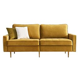 Mid Century Couch Sofa with Upholstered Velvet Fabric and Metal Legs,Modern Luxury Loveseat 2 Wi ...