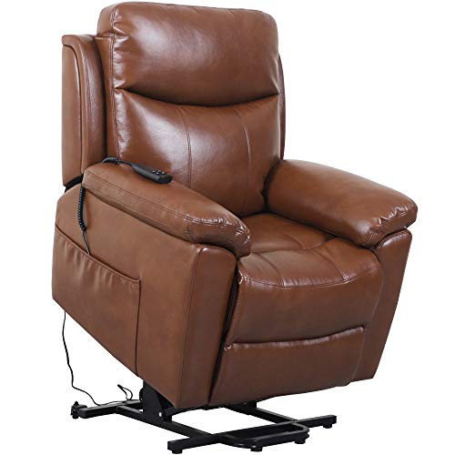 Irene House (Dual Motor) Lays Flat Electric Power Lift Recliner Chair for Elderly Comfortable  ...