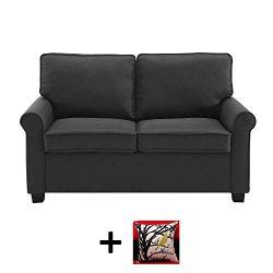 Mainstay Sofa Sleeper with Memory Foam Mattress | No-Tool Easy Assembly, Black + Free Decorative ...