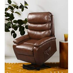 DEVAISE Power Lift Massage Recliner Chair with Heat and Vibration for Elderly, Living Room Sofa  ...